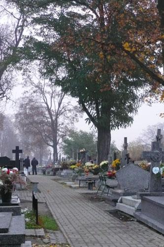 cmentarz 6b