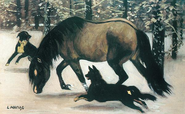 Kon Drzemik z psami