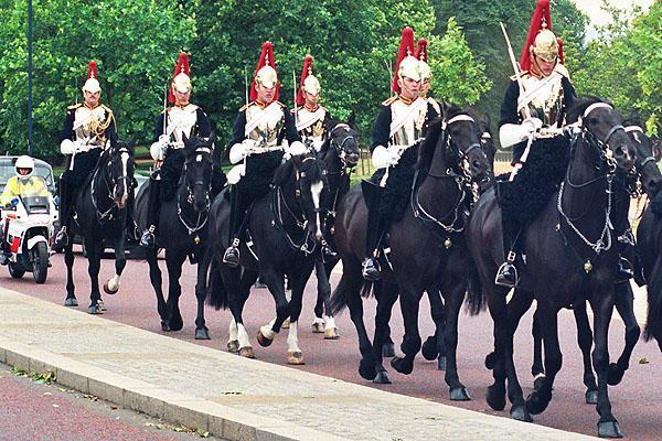 Królewska gwardia 3