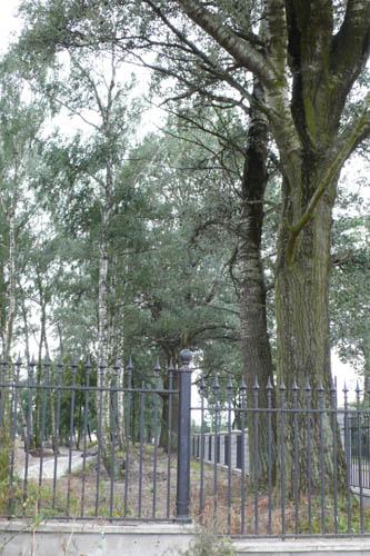 Podstawą parku są stare drzewa