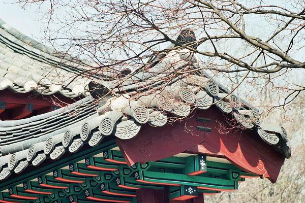 Stare budowle w mieście