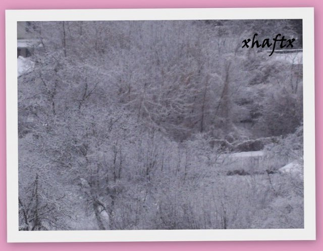 14 marca 2010_3
