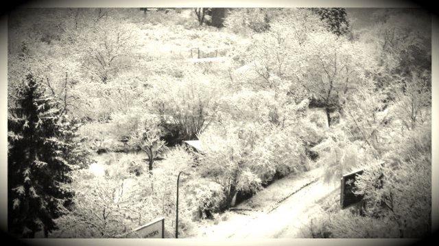 zima_2