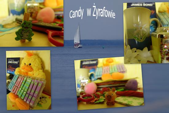 Candy wakacyjne w Zyrafowie