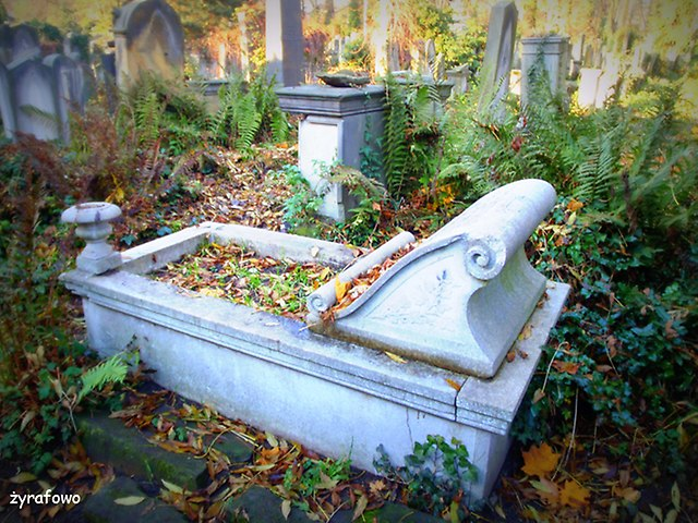 Cmentarz Zydowski_13