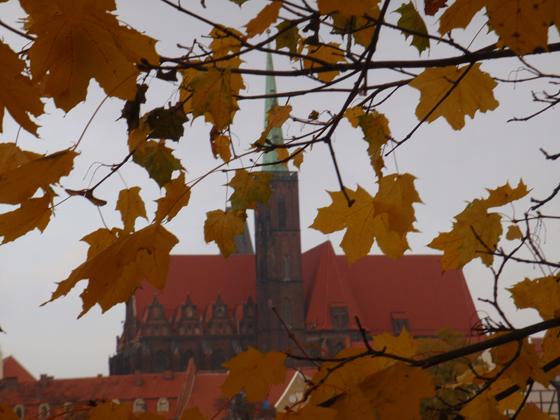 jesien 2011_40