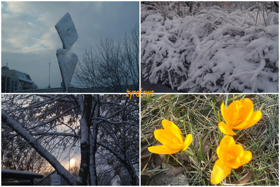 zima 2010_66