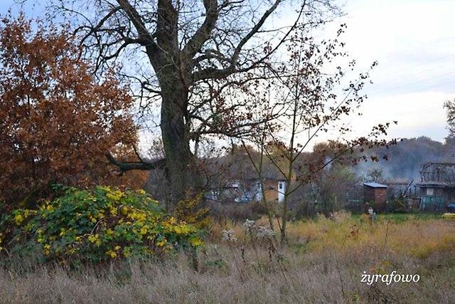 jesien 2012_215