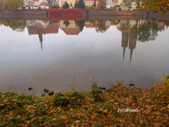 jesien 2011_37