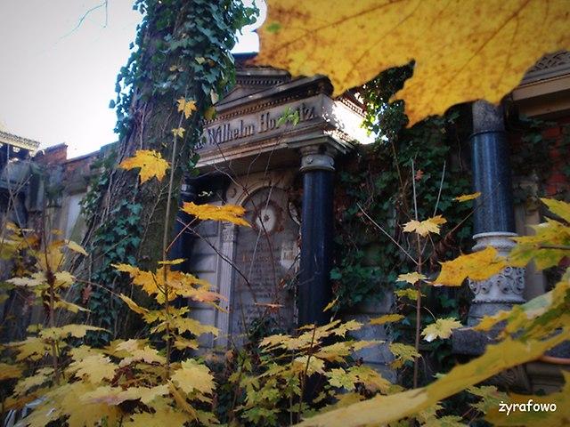 Cmentarz Zydowski_09