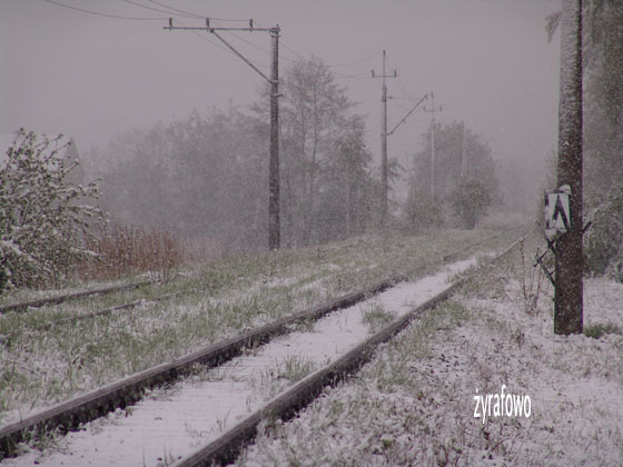 majowka 2011_08