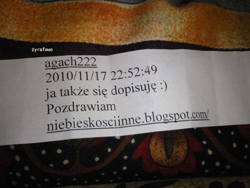 losowanie_04