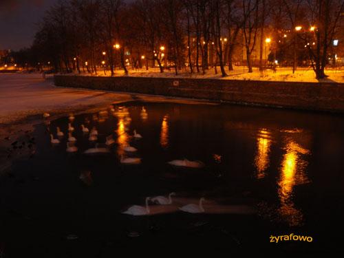 Wroclaw 2009_05