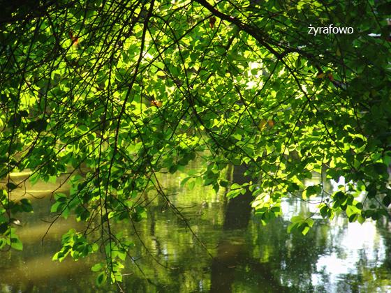Ogrod Botaniczny 2011.08_04