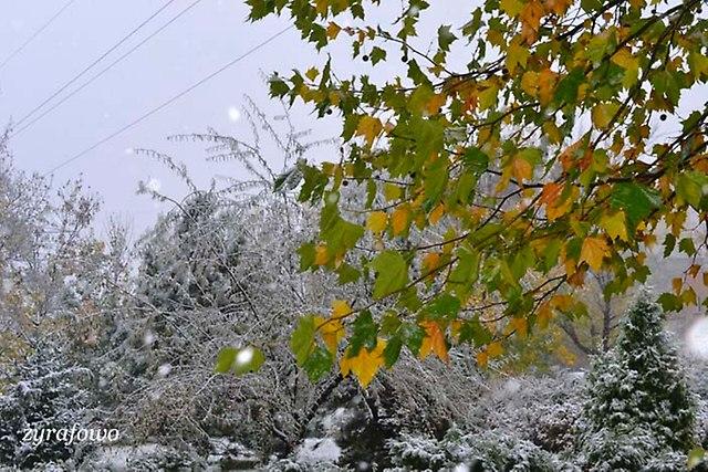 jesien 2012_138