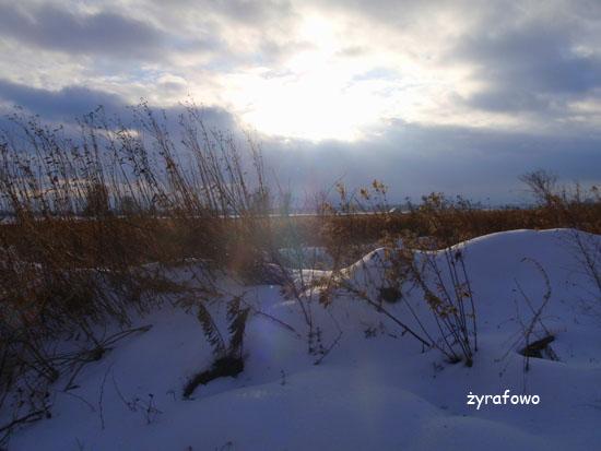 zima_15
