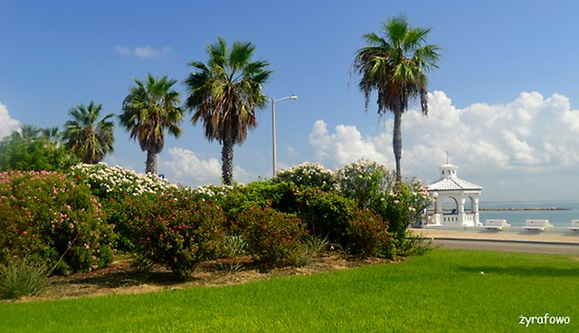 Corpus Christi 2014_19