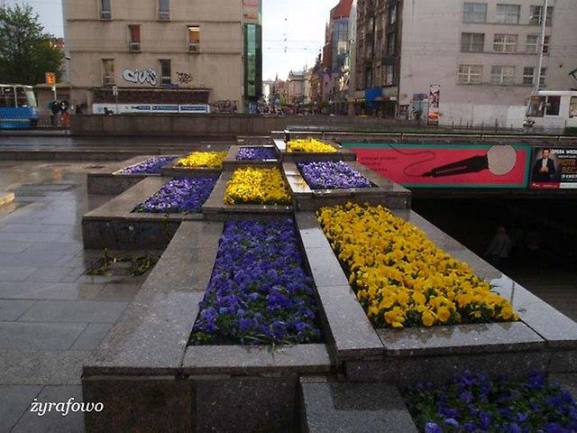 wiosna 2014_84