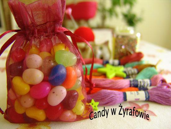 Candy w Zyrafowie
