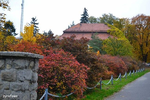 jesiennie_03