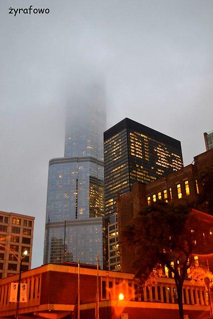 Chicago 2014_56
