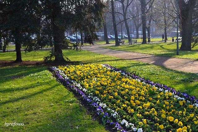 wiosna 2014_32