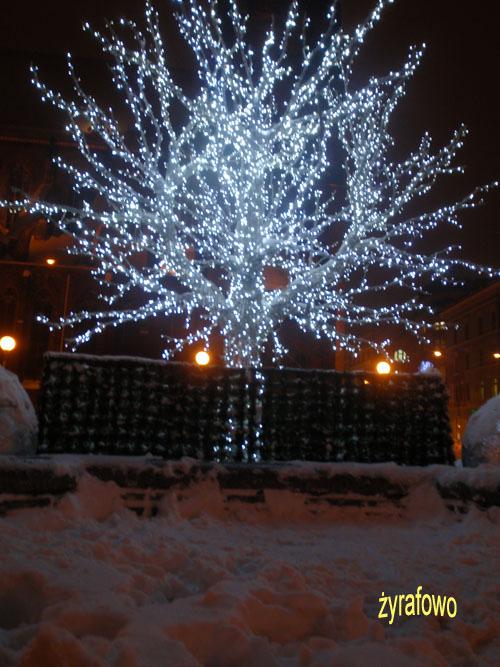 zima 2010_45