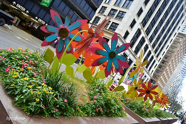 Chicago 2014_96