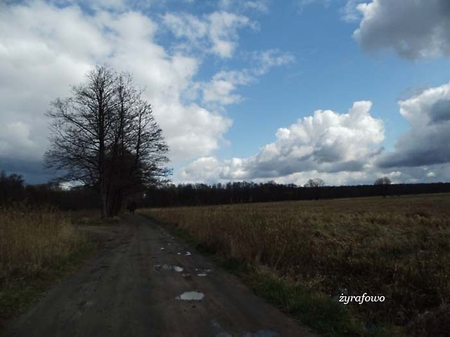 kwiecien 2012_17