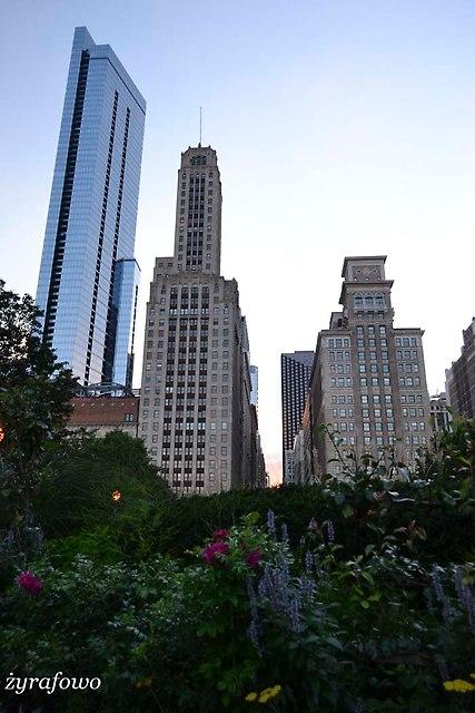 Chicago 2014_28