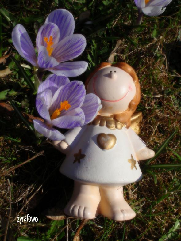 wiosna 2012_04