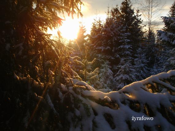 zima_24