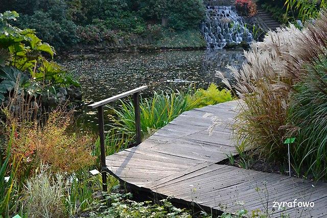 Ogrod Botaniczny 2014_27