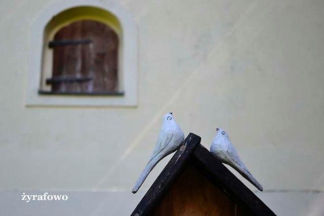 Gdansk-Oliwa_13