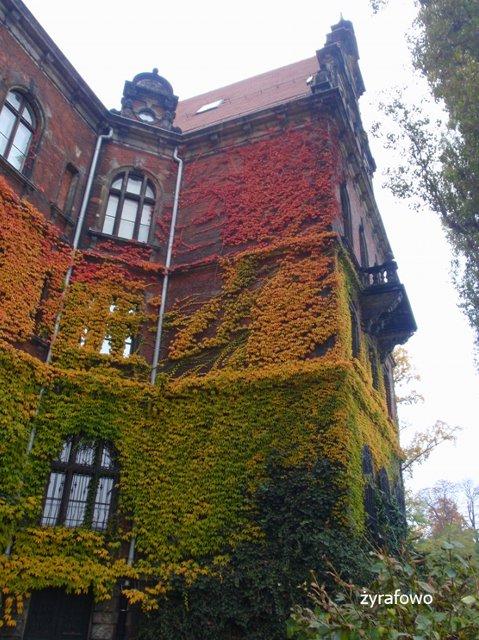 jesien 2011_46