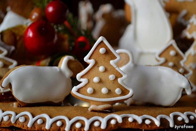 Boze Narodzenie 2015_20