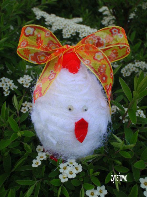 kurczak 2011_27