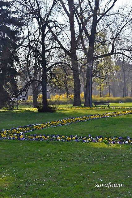 wiosna 2014_34