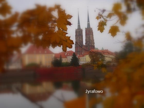 jesien 2011_35