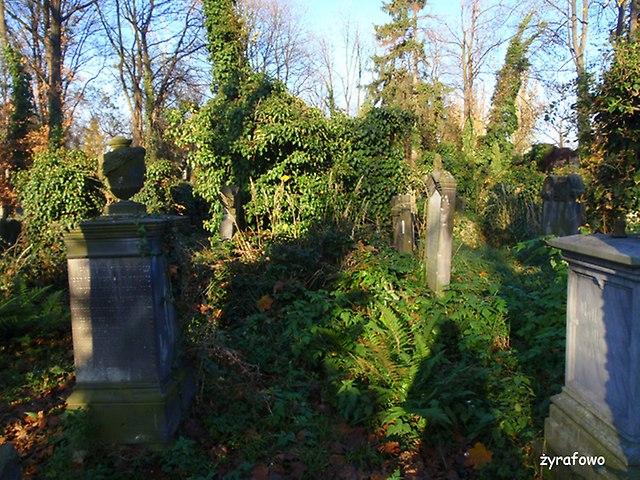 Cmentarz Zydowski_19