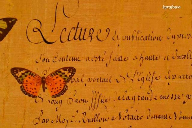 pudelko z motylami_02