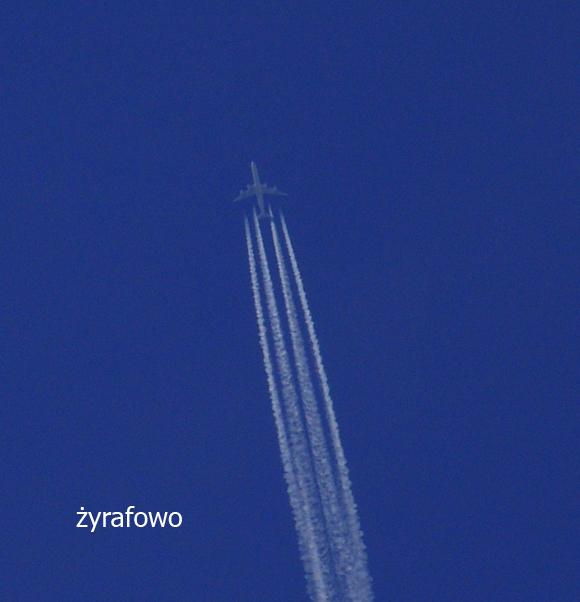 samoloty 2011_10