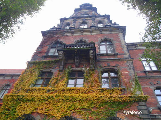 jesien 2011_45