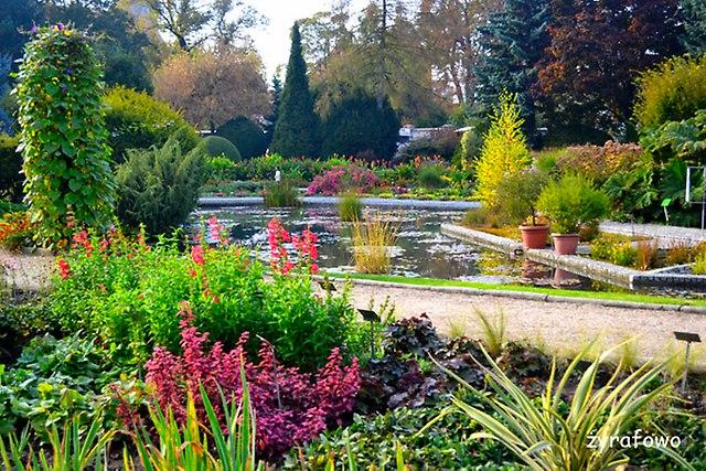Ogrod Botaniczny 2014_21