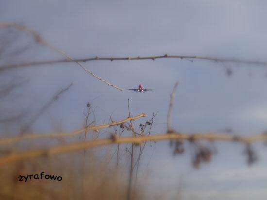 samoloty 2011_01