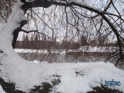 zima 2010_39