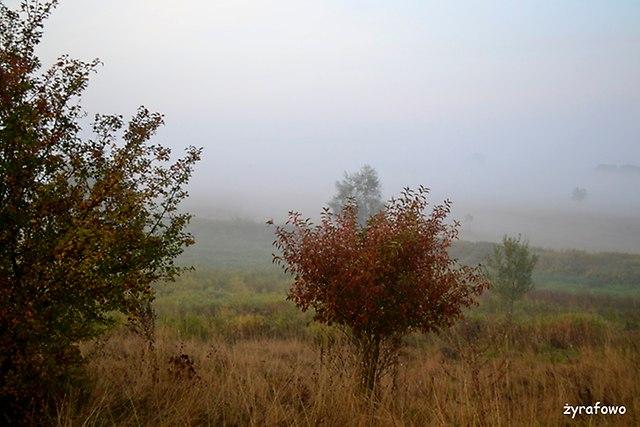 jesien 2015_52