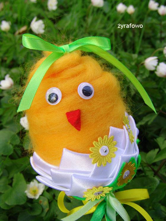 kurczak 2011_20