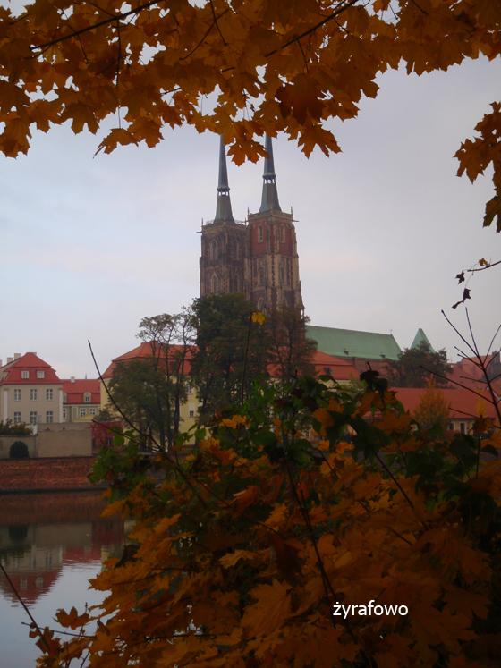 jesien 2011_43