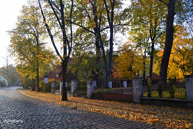 Opole 2013_38